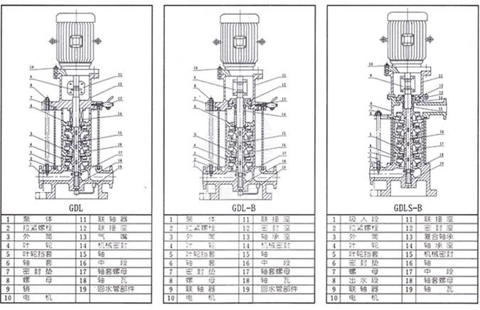 gdl管道泵结构简图